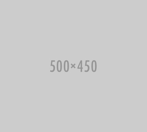 500x450