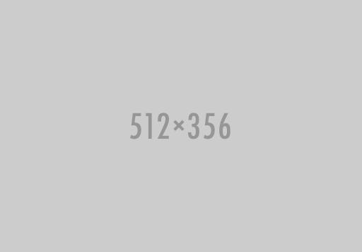 512x356