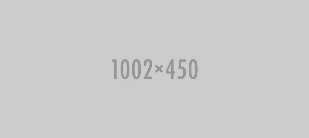 1002x450